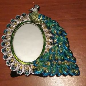 Peacock picture frame Z gallerie